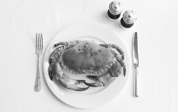 Angler-crab-black-and-white